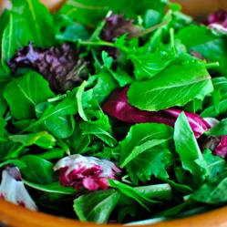 salad-greens-img